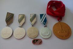 Часть сохранившихся медалей