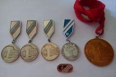 Часть сохранившихся медалей (оборотная сторона)